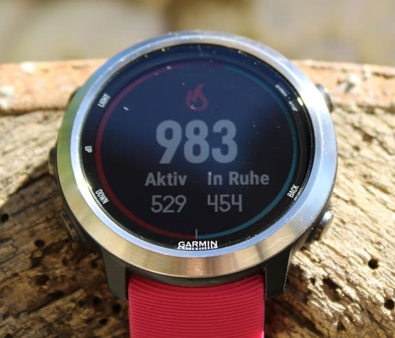 Garmin Forerunner 645 Test